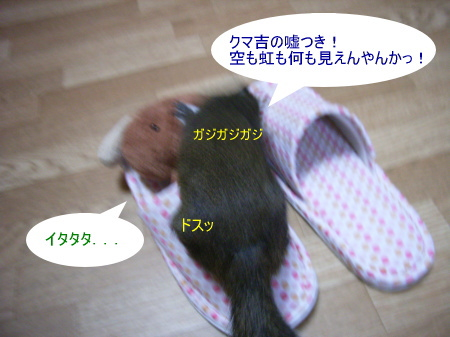 a0015164_10574424.jpg
