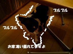 d0041575_222273.jpg