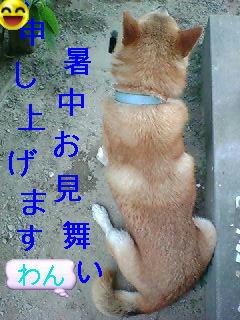 d0038784_9592013.jpg