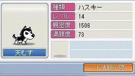 e0010985_1125430.jpg