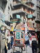 ネパールでどうでしょう(5)_d0066442_20402126.jpg