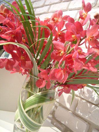 お花を長持ちさせるには・・_d0000304_11214773.jpg
