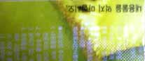 b0058108_2033311.jpg