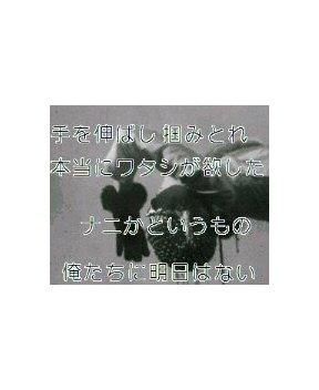 b0055123_23481134.jpg