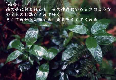 b0044724_2141053.jpg
