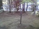 b0060945_14325956.jpg