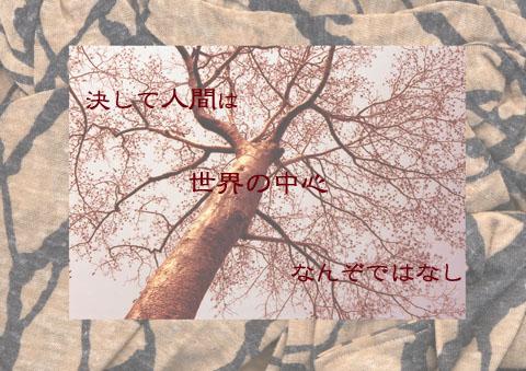 d0018646_145242100.jpg