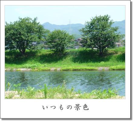 b0066985_1319599.jpg