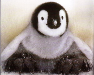 「皇帝ペンギン」ネタバレあり・・・。_a0037338_0523868.jpg