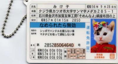 c0073845_19435888.jpg