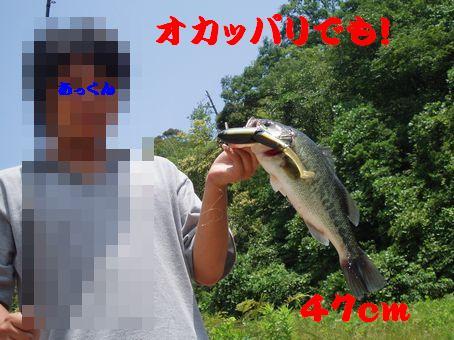 e0000352_1663173.jpg