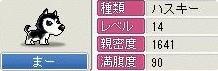 b0059423_14533657.jpg