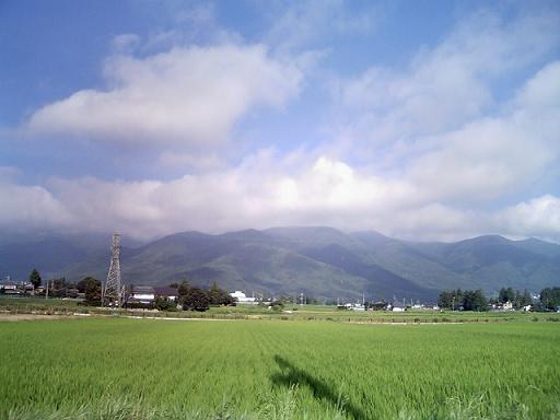 夏の朝_a0014840_2140316.jpg