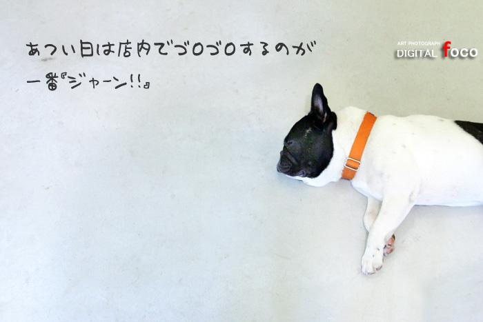 b0001167_19104338.jpg