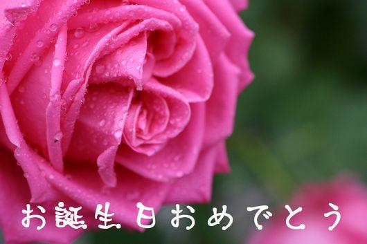 b0061787_0583145.jpg
