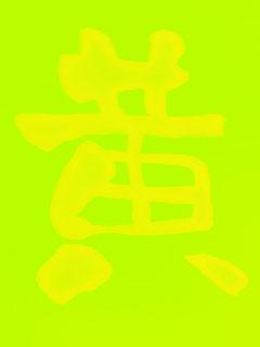 ひまわり観察日記 7/29_c0053520_1131509.jpg