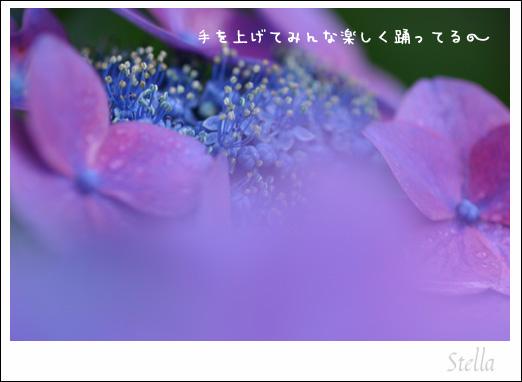 d0015026_11361325.jpg