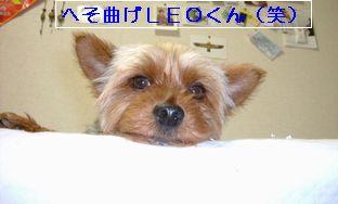 b0005752_2221789.jpg