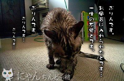 お風呂日和_e0031853_2222157.jpg