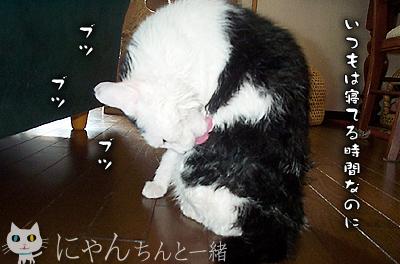 お風呂日和_e0031853_2292324.jpg