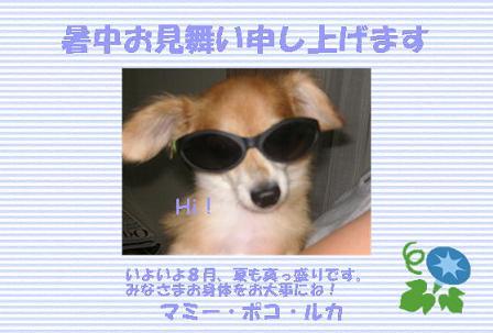 e0034467_1512756.jpg