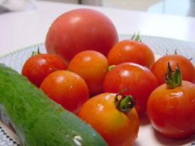 うれしい収穫_e0030180_1855195.jpg