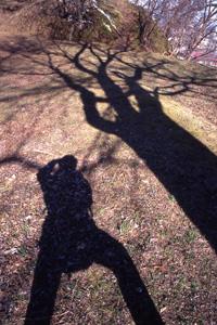 木は知っている_b0062963_611118.jpg