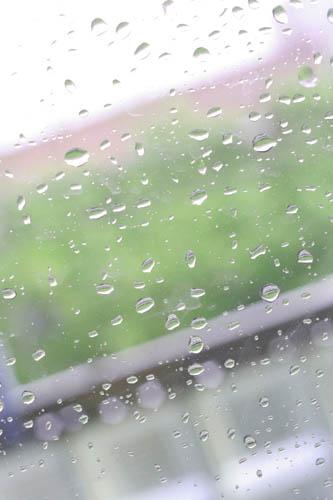 夏の日の水滴_e0040957_2015322.jpg