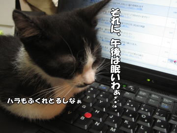 b0041182_14544931.jpg
