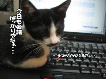b0041182_18202960.jpg