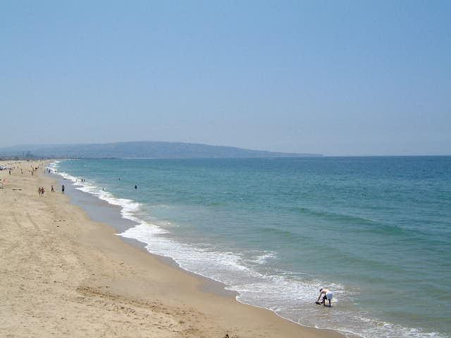 Beach  _e0042839_1553814.jpg
