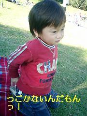 e0012343_7303850.jpg