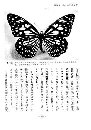 b0047738_1495925.jpg