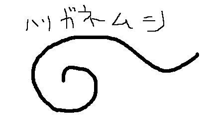 d0011358_193026.jpg