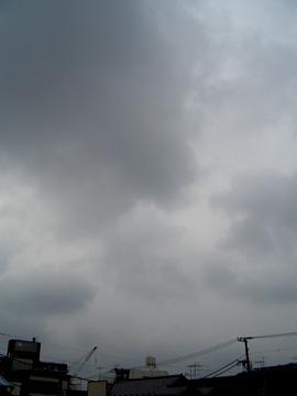 b0000608_735311.jpg