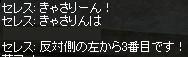 d0035829_057512.jpg