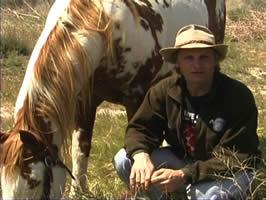 アメリカ野生馬保護DVD_b0064176_1202465.jpg