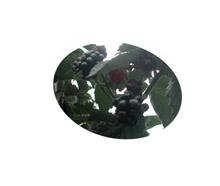 d0053605_18345052.jpg