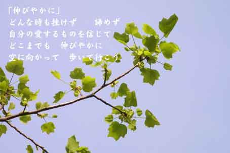 b0044724_9531598.jpg