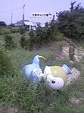 b0060945_11103218.jpg