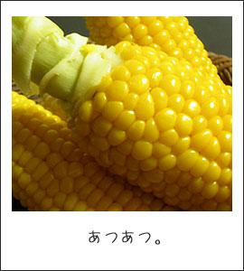 b0040868_043715.jpg