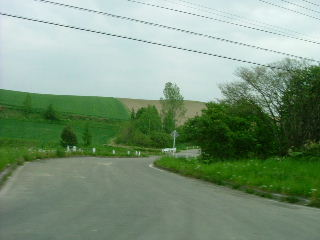 北海道の景色_e0012815_2311676.jpg