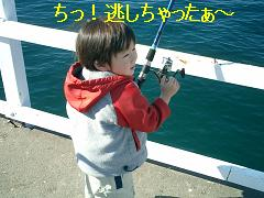 e0012343_7341018.jpg