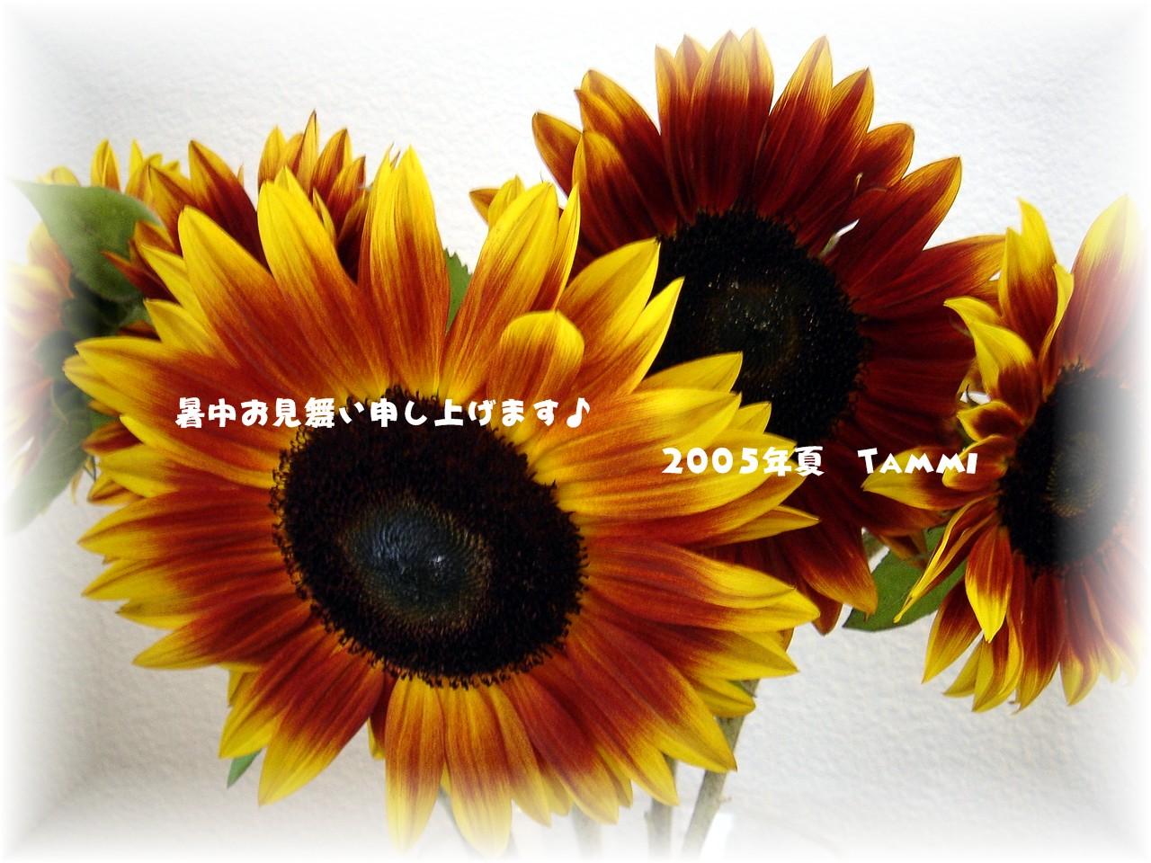 c0041960_05130100.jpg