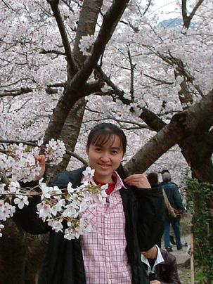 花見_e0046428_1649582.jpg