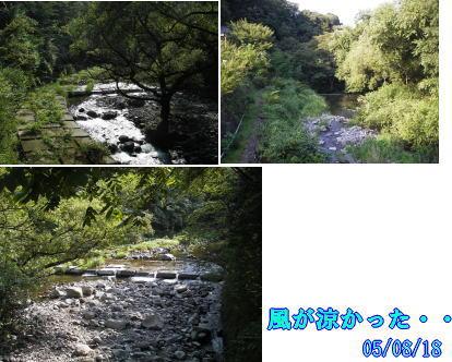 箱根・天山_b0063399_23412394.jpg