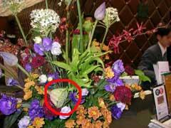 ホテルの花に「蓮」 (蓮画像ぢゃないよ)_b0054727_0574286.jpg
