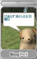 c0070849_15272199.jpg