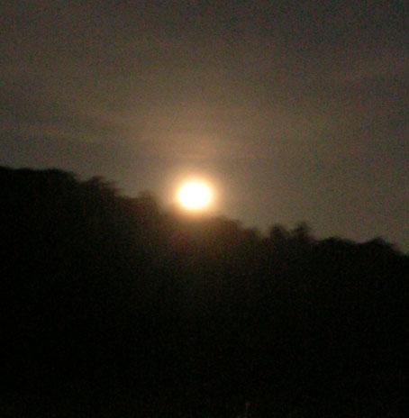感激、北鎌倉の夜空に輝く満月をゲット!(2005・8・20)_c0014967_2239483.jpg