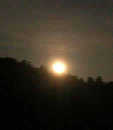 感激、北鎌倉の夜空に輝く満月をゲット!(2005・8・20)_c0014967_22442584.jpg